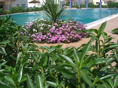 Photo for Charming apartment close to the beach with three pools and gardens
