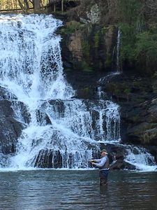 Photo for Waterfall Cottage at Cane Creek Falls, 2BR/2BA within sight & sound of the falls