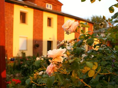Photo for Comfortable 4 star 75sqm apartment for 3 people in Brandenburg