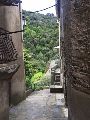Photo for 1BR House Vacation Rental in Vescovato, Corse