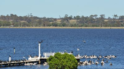 Photo for Bayview Boathouse Gippsland Lakes