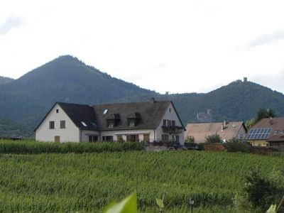 Photo for 2BR Apartment Vacation Rental in Zellenberg, Grand Est