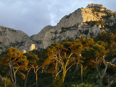 Photo for Jolie rental 1-5 pers quiet area between Marseille beaches and Calanques