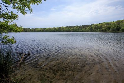 Deeded beach to Flax Pond (rated 2nd best pond on Cape Cod). Kayaks provided.