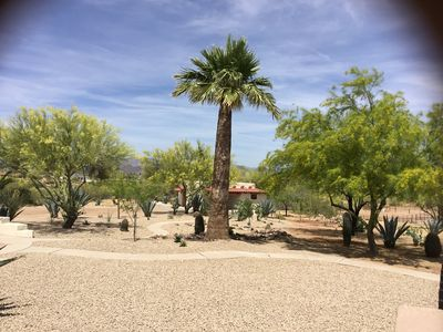 Photo for Newly remodeled Casita surrounded by Beautiful Desert Scape.