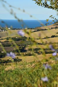 Photo for Wellness and relax in the Marche region in Tenuta Coste Sunglasses