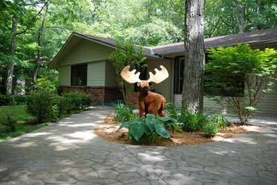 Front of house - Moose