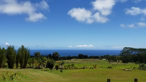 Photo for 1BR Guest House Vacation Rental in Hakalau, Hawaii