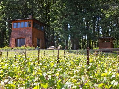 Photo for Beautiful Cabin in the heart of Oregon Wine Country - stunning views!