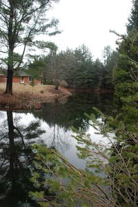 Photo for 2BR Cottage Vacation Rental in Beulah, Michigan