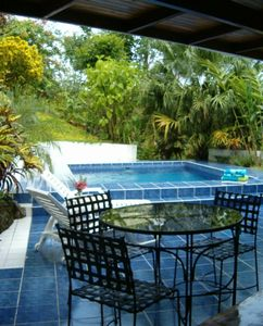 pool area and garden