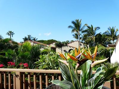 Photo for Save up to 25%!  Maui Kamaole 2BD Garden View  #D202