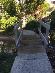 Bridge over landscaping and stream