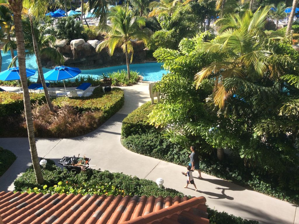 Beautiful Embassy Suites Palm Beach Gardens Pictures Inspiration ...