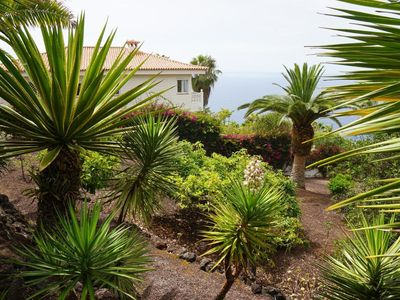 Photo for 1BR Apartment Vacation Rental in El Sauzal, Teneriffa Nord
