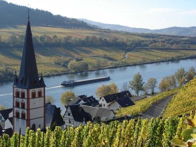 Photo for 1BR Apartment Vacation Rental in Zell (Mosel), RP