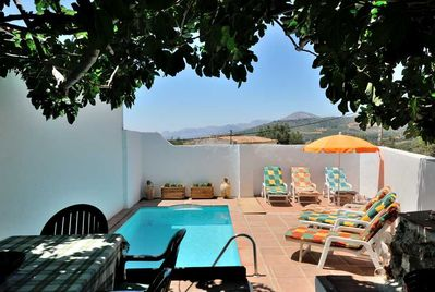Pool terrace with fig tree
