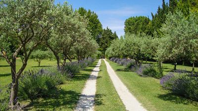 Photo for Luxurious Mas Provençal With Private Pool And Mediterranean Garden