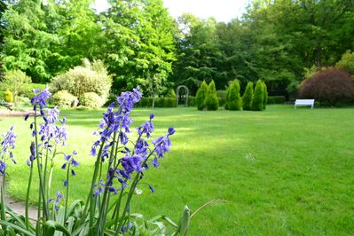 Meticulously landscaped garden with  half an acre lawn surrounded by woodland