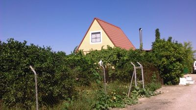 Photo for Little house among oranges