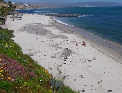 Enjoy the private beach that is steps from our house.