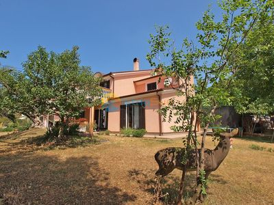 Photo for Apartment 730/1705 (Istria - Stinjan), Budget accommodation, 1000m from the beach