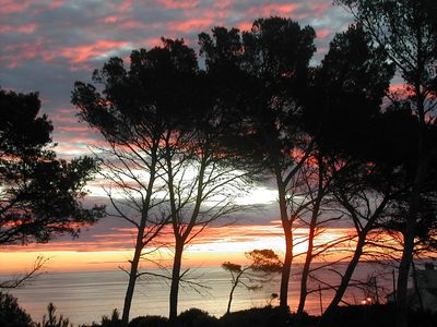 Photo for Exclusive Modern Apartment By The Sea. Private patio surrounded by pine forest.