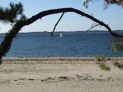 Photo for Apt 4 people, in quiet area, 50 meters from the beach in Arcachon