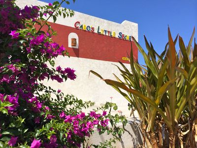 Welcome to Cabo's Little Secret.  We've been expecting you.