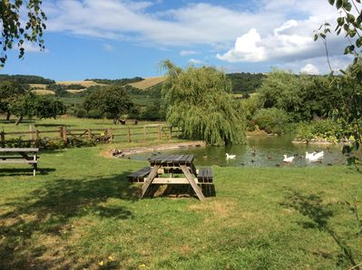 Pond and Seating Area Over looking the Mendip Hills and the Animals in the Field