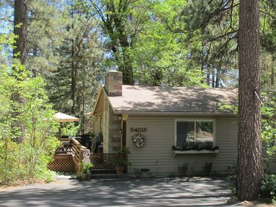 Photo for Home Away From Home In Idyllwild -short Walk To Village And Trails