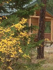 Grizzly Cabin at Lozeau Lodge Montana-Family Sized, comfortable and modern