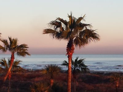 GALVESTONIAN Tropical Island Getaway #107 - Right on Galveston East Beac -  Galveston