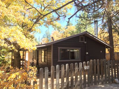 Cozy Zephyr Cabin nestled on a large, private, treed lot in the Mountains