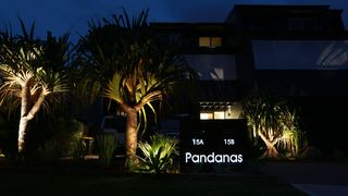 Pandanas in Mollymook 15B