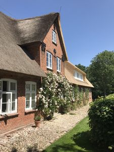 Photo for Thatched property in a secluded location