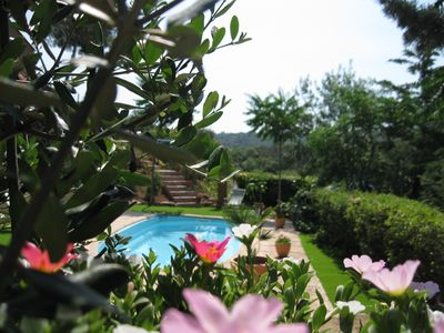 Photo for south of france sunny farmhouse in mediterranean garden