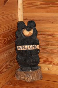 Photo for Fall fun at the cabin! Convenient to Lake Keowee and Clemson