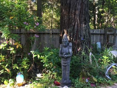 Photo for Sanctuary Corazon just minutes from the Mendocino Village & Pacific Ocean