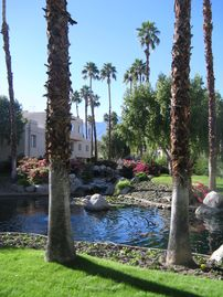 Canyon Shores, Cathedral City, CA, USA