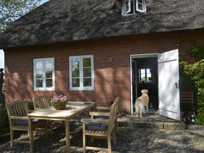 Photo for Thatched Frisian house Andrea on the North Sea