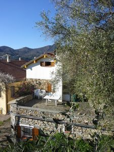 Photo for Nice farmhouse in the middle of the olive groves close to the sea
