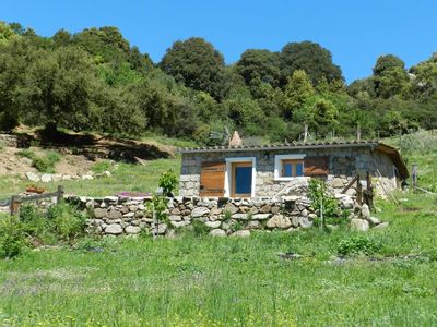 Photo for Quiet House with character in Sartene's country - Beautiful panorama on Sea and Montain