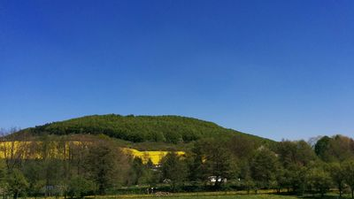 Photo for Get away - The Green heart of Germany