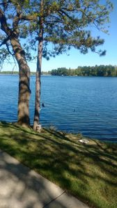 Photo for 2BR Cabin Vacation Rental in Pierz, Minnesota