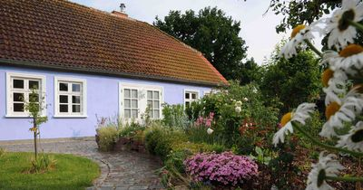 Photo for exclusive house to feel good with chimney, romantic farm garden - Usedom