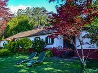 Wonderful tranquil house located in botanical garden