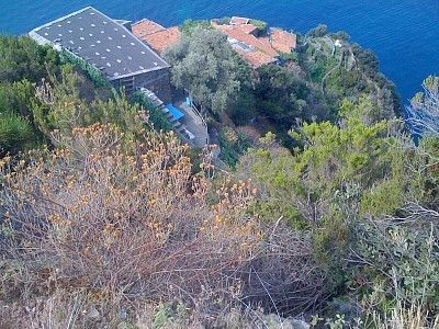 View of the house from the top