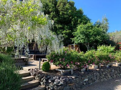 Photo for Anderson Valley Vineyard Hideaway in Philo