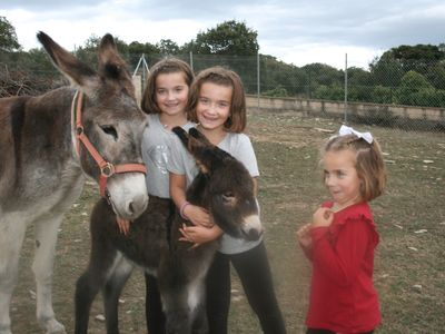 Photo for Family suite with day and night farm activities